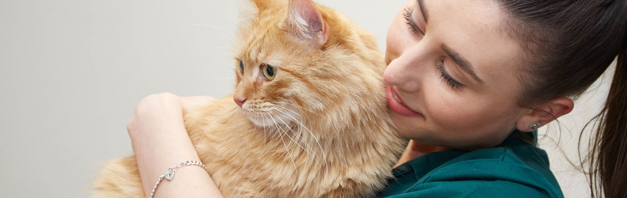 We are an accredited cat friendly clinic