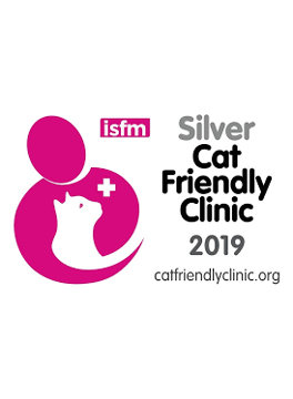 Silver cat friendly award